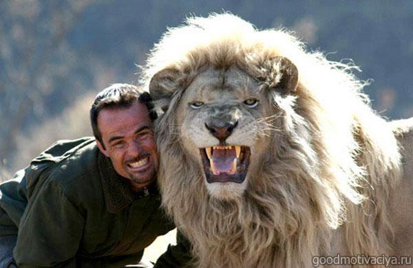 львы заклинателя зверей
