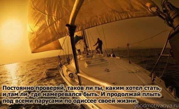 citaty-svyatoy-serfingist-i-direktor