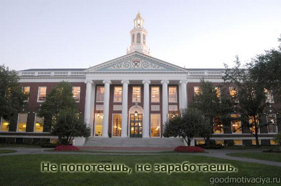 Гарвард и мотивация