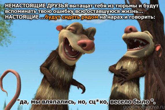картинки про дружбу друзей