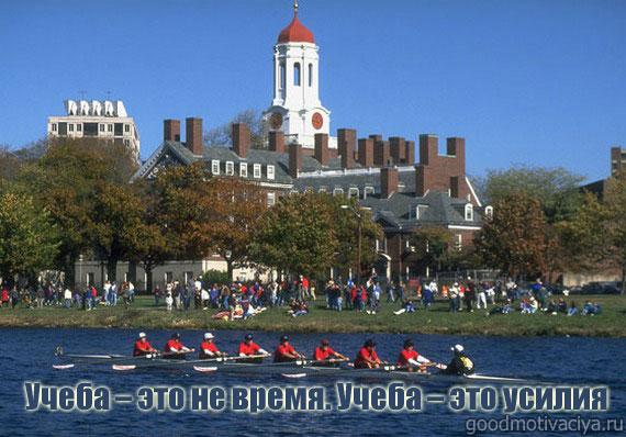 Мотивирующие фразы Гарварда